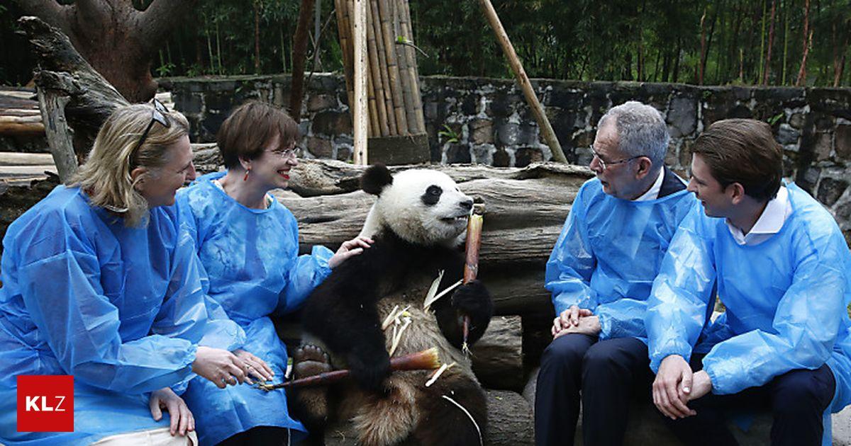 China Besuch F 252 R Van Der Bellen Und Kurz Ein Quot Voller Erfolg Quot 171 Kleinezeitung At