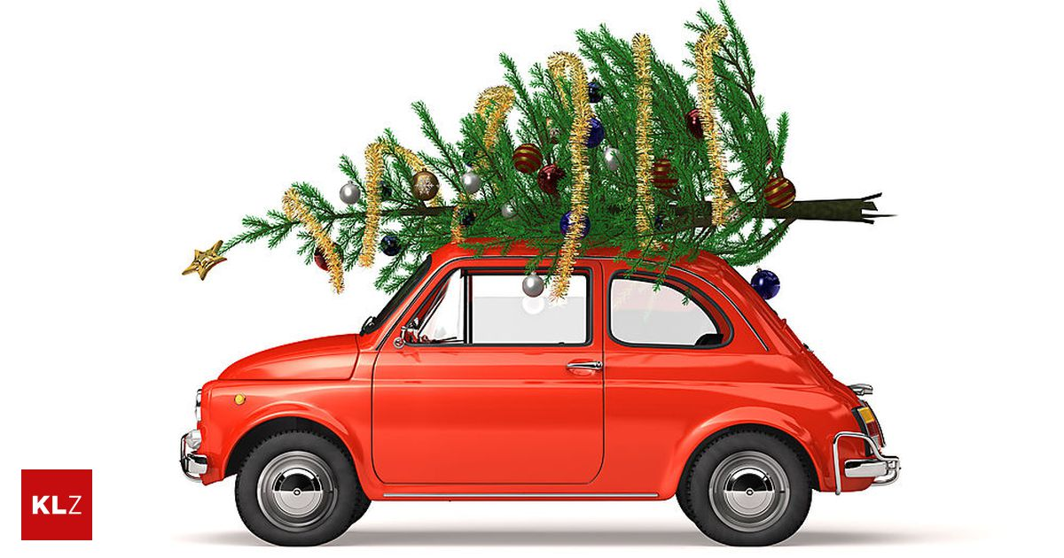 Auto Weihnachtsbaum.Verkehrssicherheit So Transportiert Man Christbäume Richtig