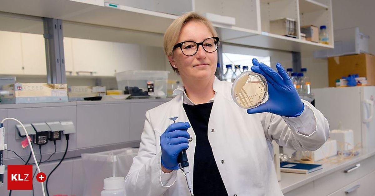 """Forschung von Grazer Biochemikerin: Pilze, die Plastik """"zerfressen"""""""